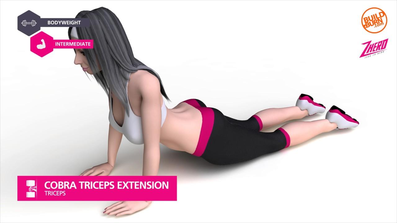 Kết quả hình ảnh cho Triceps Extension with Cobra