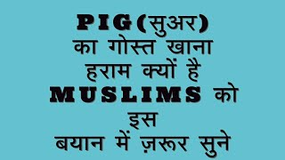 Islam mein suar ka gosht khane ki mumaaniyat kyun nahi