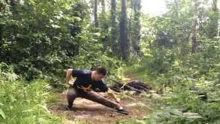 Wu Bu Quan  Five stances form Part 2 Master Yan Xin