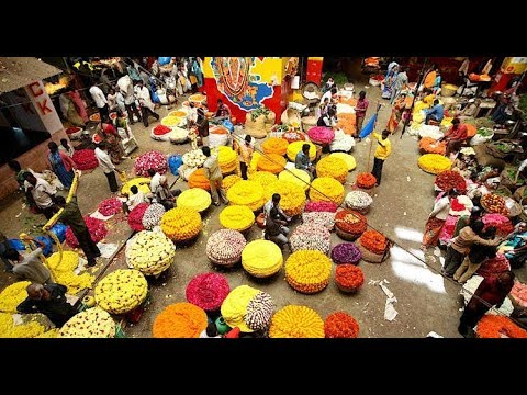 Asia's biggest flower market is in India  - KR Market Bangalore 😁