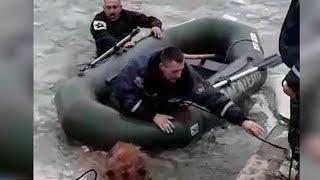 Кубанские спасатели вытащили провалившуюся под лед собаку
