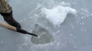 Установка сетей зимой, запускаем под лед, подробно. fishing with nets.