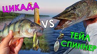 ТЕЙЛ СПИННЕР VS ЦИКАДА МОДА или НЕОБХОДИМОСТЬ Рыбалка на спиннинг 2021 Ловля щуки судака окуня