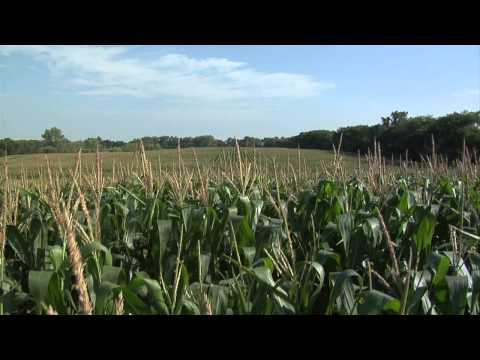 ND Dept of Agriculture - Diversity