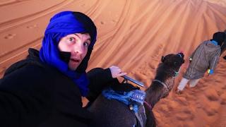 SUNRISE CAMEL ADVENTURE - Merzouga Desert, Morocco