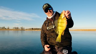 North Dakota Slough Tiger Jumbo Perch and Bonus Walleyes ON ICE - In Depth Outdoors S15 E3