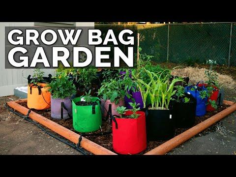 start-a-grow-bag-garden-and-water-it-easily