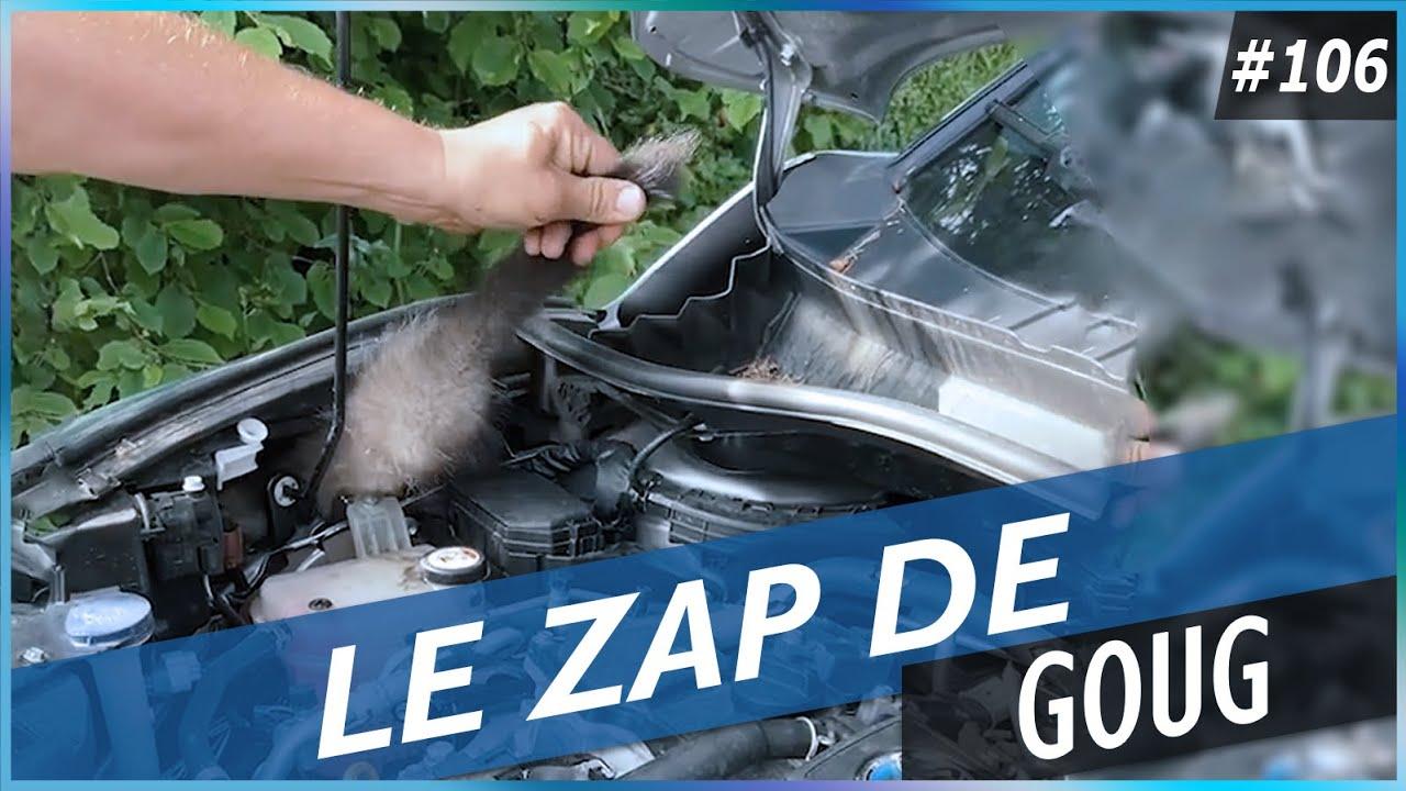 LE ZAP DE GOUG N°106 - FUN, FAILS, CHOC & INSOLITE