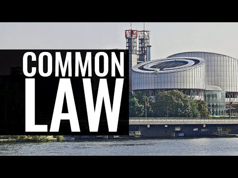 In the Context of the Common Law: The European Court of Human Rights in Strasbourg - Bostjan M. Zupa