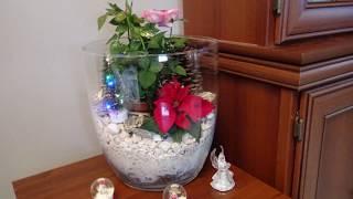 GARDEN 121 - Mini ogródek w szklanym słoju. Christmas decoration