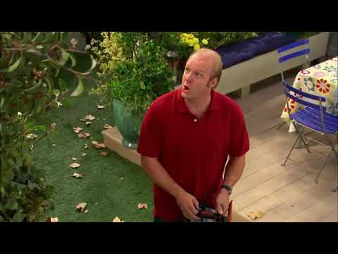 Download Good Luck Charlie Full Episodes S01E09 Up a Tree • Part 3