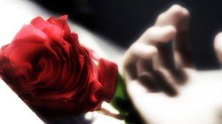 Стихи о любви: красивые стихи мужчине о любви. Грустные видео