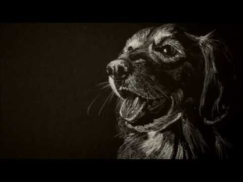 White Charcoal on Black Artagain Paper - Time Lapse