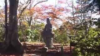 Fukushima Nuclear Accident 東京・高尾山・佛舎利奉安塔の放射線測定20151128