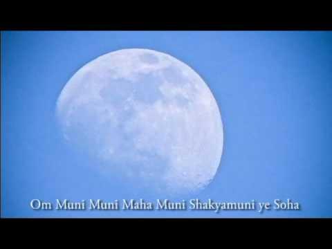 Om Muni Muni Maha Muni Shakyamuni ye Soha