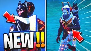 "THE NEW ""SAC TO DOS"" EXCLUSIVE HALLOWEEN ""CHIEN SQUELETTE"" FREE on FORTNITE Battle Royale! 😱"
