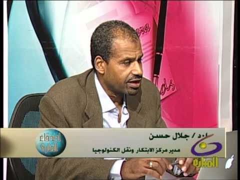 Prof. Galal-Edeen on Road Traffic Safety Issues (Egypt)