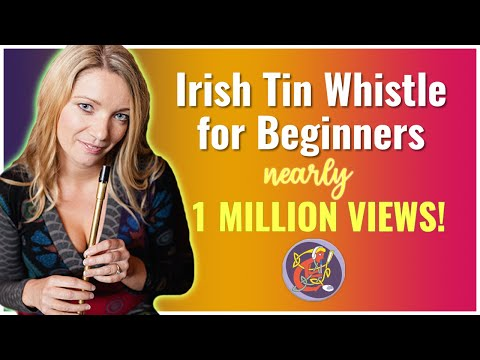 Beginner Irish Tin Whistle Free Lesson 1: Intro + Hand & Finger positioning + D Scale