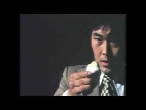 Bruce Lee Fights Back from the Grave - Marital arts, America -- You can't keep a good man down!