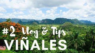 CUBA #2: Viñales, paraíso verde | Vlog & Tips