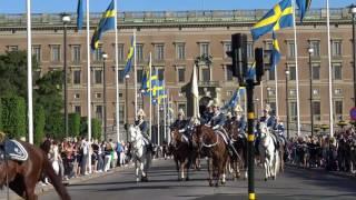 sveriges nationaldag 2017