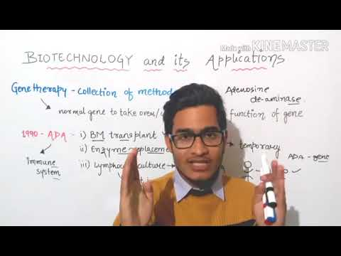 Gene therapy-application of biotechnology in medicine.