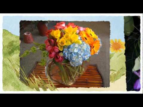 Flowers and Gifts Delivery in Corte Madera - San Rafael Florist