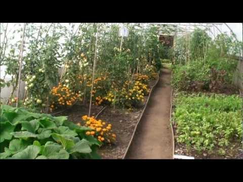 The Islay House Community Garden - Bridgend, Isle of Islay, Inner Hebrides, Scotland