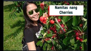 My First Vlog || Nanguha nang Cherries.