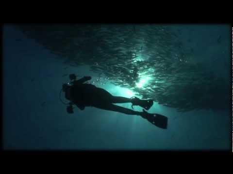 Scuba diving in Sipadan, Sabah, Borneo, Malaysia (Celebes Sea) hd 2012 (Part I)