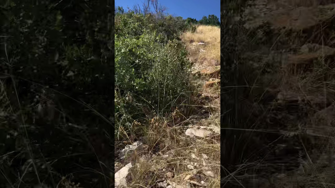 Land for Sale in Colorado by Owner. Lake view in Colorado City!