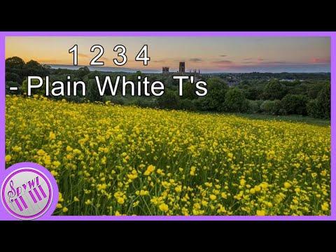 1 2 3 4 (Plain White T's) - Piano Cover