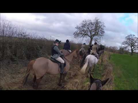 The Readyfield Bloodhounds Hunt Meet - 27/01/19 (GoPro HeadCam)