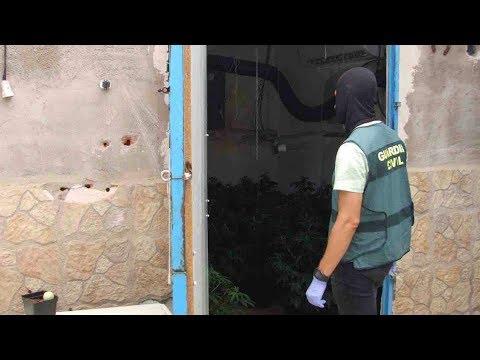 Cae una peligrosa organización criminal dedicada al tráfico de drogas en Murcia y Valencia
