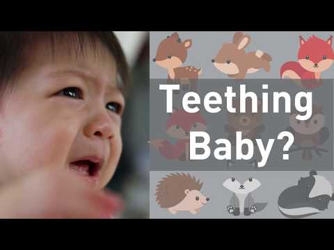 Do Teething Babies Need Medicine On Their Gums? No