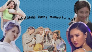 MAMAMOO Funny Moments 2019