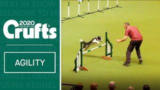 Large International Agility Final | Crufts 2020