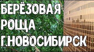 Әуеден суретке түсіру. Березовая роща қаласының Новосибирск
