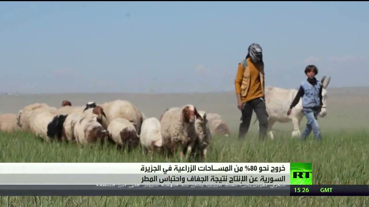 احتباس الأمطار.. خطر يهدد الجزيرة السورية  - نشر قبل 3 ساعة