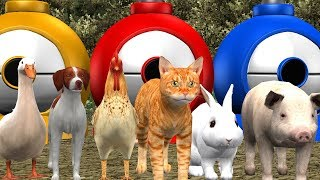 Learn Colors With Farm Animals || Educational Rhymes || Colour Song Collection