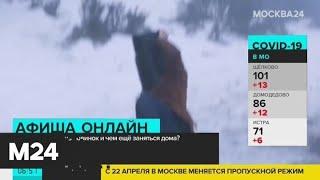 """В прокат выходит фильм """"Подлинная история банды Келли"""" - Москва 24"""