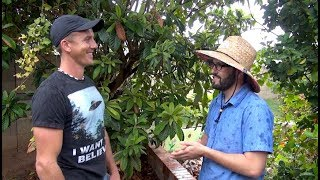 A Master Gardener's Legacy | Son Carries On Dad's Garden | Decades Old Backyard Food Forest!