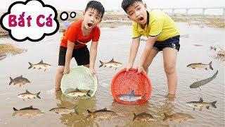 Trò Chơi Bắt Cá Bắt Cua Ngoài Sông ♥ Min Min TV Minh Khoa