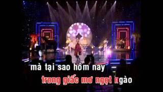 Tình Đắng - Cẩm Ly (Karaoke)