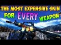 CS GO - The Most Expensive Skin For EVERY Weapon