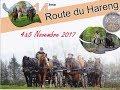 2017 11 Route du Hareng 2017