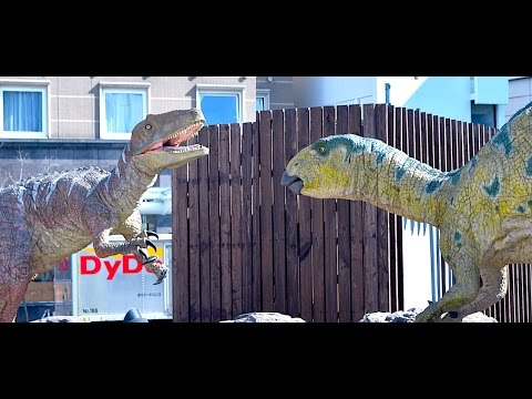 Japanese Dinosaurs Fight in Fukui!
