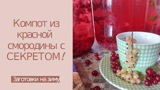 Компот из красной смородины на зиму с мятой или мелиссой