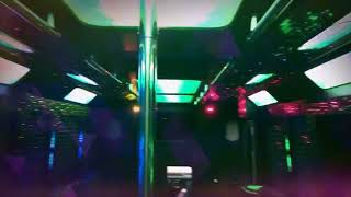 24 Passenger Party Bus by Deluxe Limousine of Houston, TX