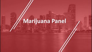 Marijuana/Cannabis/CBD Panel at the 2019 NAI Florida & Caribbean Forum